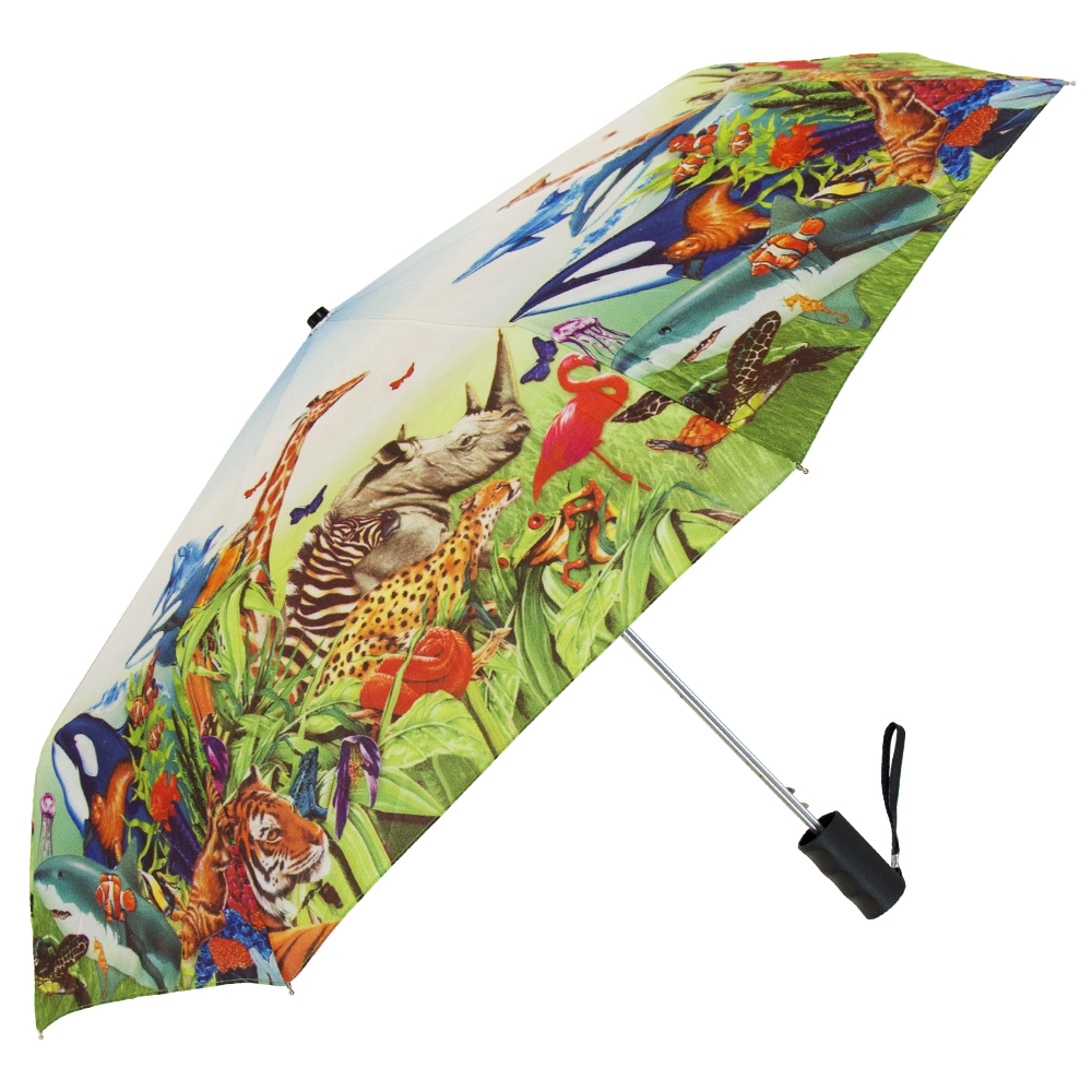 Full-Color Canopy Printing - Single Canopy